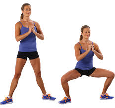 Image result for pile squat